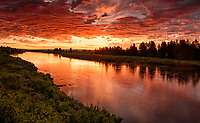 A glorious sunrise on the Henry's Fork of the Snake River.  July