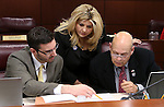 Nevada Assembly Republicans Wes Duncan, Michelle Fiore and Jim Wheeler work in committee at the Legislative Building in Carson City, Nev., on Wednesday, May 15, 2013. .Photo by Cathleen Allison