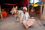 Hindu sadhus sit with their dogs at their tents during the Kumbh Mela, Haridwar, India.