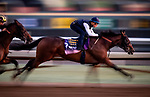 OCT 27: Breeders' Cup Juvenile Fillies entrant Bast, trained by Bob Baffert, works at Santa Anita Park in Arcadia, California on Oct 27, 2019. Evers/Eclipse Sportswire/Breeders' Cup