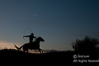 Cowboy roping at sunset Cowboys working and playing. Cowboy Cowboy Photo Cowboy, Cowboy and Cowgirl photographs of western ranches working with horses and cattle by western cowboy photographer Jess Lee. Photographing ranches big and small in Wyoming,Montana,Idaho,Oregon,Colorado,Nevada,Arizona,Utah,New Mexico.