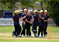 EGGS players congratulate Bella Armstrong on a wicket during the the New Zealand Secondary Schools 1st XI NZCT girls' cricket national finals match between Tauranga Girls' College and Epsom Girls' Grammar School at Fitzherbert Park in Palmerston North, New Zealand on Sunday, 3 December 2017. Photo: Dave Lintott / lintottphoto.co.nz