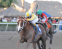 Delightful Mary(#3) and R Holiday Mood(#2) dead heat for the win in the Ocala Stakes at Gulfstream Park on 1-8-12.Delightful Mary was ridden by Luis Contreras and R Holiday Mood was ridden by John Velazquez