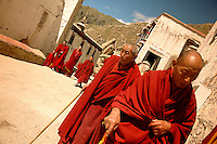 The Gelugpa sect of Tibetan Buddhism is the order of the Dalai Lamas and the great monastic universities that first appeared in the middle ages and flourished in isolation until 1951. Drepung is now the largest monastery in Tibet with only about 800 monks in residence.