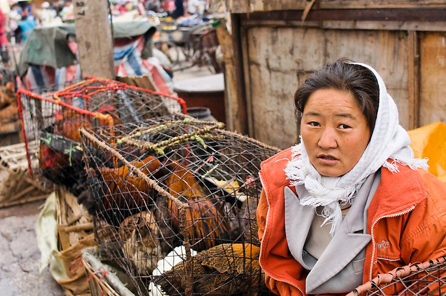 Live chickens are sold and butchered minutes later, China