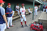Second baseman Kervin Suarez (36) of the Greenville Drive, center, in the dugout before a game against the Kannapolis Intimidators on Wednesday, May 9, 2018, at Fluor Field at the West End in Greenville, South Carolina. Kannapolis won, 10-2. (Tom Priddy/Four Seam Images)