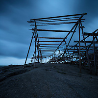 Empty cod stockfish drying racks rise into a dark sky, Reine, Moskenesøy, Lofoten Islands, Norway