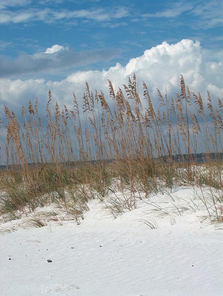 Beach on the Gulf of Mexico near Destin, Florida
