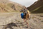 Snow Leopard (Panthera uncia) veterinarian, John Ochsenreiter, riding on horseback to camp, eastern Kyrgyzstan