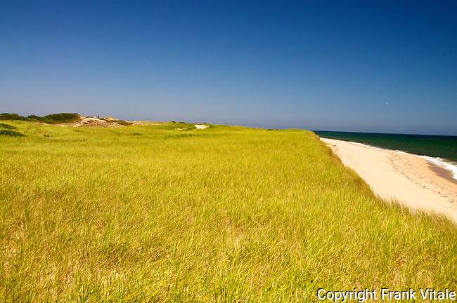 A distant view of the Euphoria dune shack looking over a wide expanse of sand and beach grass.