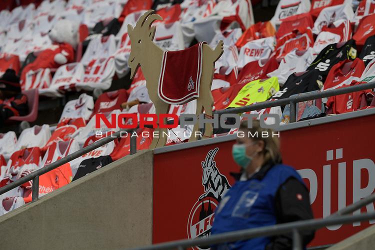 nph00351:  Auf den Sitzschalen im Stadion liegen Koeln Trikots.Eine Attrappe von Geissbock Hennes haengt an einem Gelaender.<br /> Sport: Fussball: 1. Bundesliga: Saison 19/20: 26.Spieltag: 1.FC KOELN-FSV MAINZ 05,17.05.2020.<br />  <br /> Nur für journalistische Zwecke! Only for editorial use!<br /> Gemäß den Vorgaben der DFL Deutsche Fußball Liga ist es untersagt, in dem Stadion und/oder vom Spiel angefertigte Fotoaufnahmen in Form von Sequenzbildern und/oder videoähnlichen Fotostrecken zu verwerten bzw. verwerten zu lassen. DFL regulations prohibit any use of photographs as image sequences and/or quasi-video.<br /> <br /> <br />  <br /> Foto: Anke Waelischmiller/SVEN SIMON/POOL/via Meuter/nordphoto