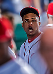 6 October 2017: Washington Nationals infielder Wilmer Difo looks down the dugout during the first game of the NLDS against the Chicago Cubs at Nationals Park in Washington, DC. The Cubs shut out the Nationals 3-0 to take a 1-0 lead in their best of five Postseason series. Mandatory Credit: Ed Wolfstein Photo *** RAW (NEF) Image File Available ***