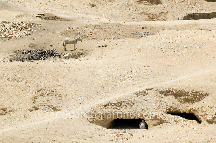 Ancient caves providing great shelter from the desert's midday heat..Qurna, Luxor, Egypt..Photo: Eduardo Martino