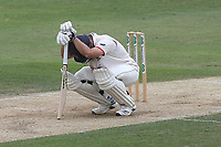 Injury concern for Ryan ten Doeschate of Essex during Essex CCC vs Yorkshire CCC, Specsavers County Championship Division 1 Cricket at The Cloudfm County Ground on 8th July 2019