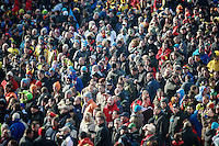huge crowds in Hoogerheiden, most of them belgians<br /> <br /> 2014 UCI cyclo-cross World Championships, Men U23