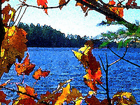 Adirondack Watercolor - Fall
