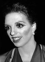 Liza Minnelli 1978<br /> Photo By Adam Scull/PHOTOlink.net