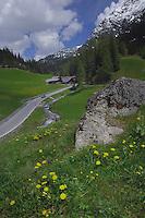 Alpine peak and forests. Bschlabs, Hahntennjoch pass, Imst district, Tyrol, Tirol, Austria.