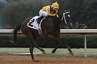 02-18-17 Bayakoa Stakes