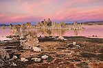 A picture if tufa towers at Mono Lake at sunrise.