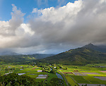 Kauai, Hawaii:<br /> View of Hanalei Valley taro fields and central mountains with afternoon clouds, Hanalei National Wildlife Refuge