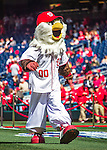 7 April 2016: Washington Nationals Mascot Screech arrives on the field prior to the Nationals' Home Opening Game against the Miami Marlins at Nationals Park in Washington, DC. The Marlins defeated the Nationals 6-4 in their first meeting of the 2016 MLB season. Mandatory Credit: Ed Wolfstein Photo *** RAW (NEF) Image File Available ***