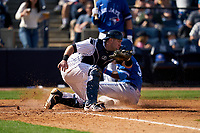New York Yankees catcher Josh Thole (30) catches a throw as Anthony Alford (30) slides home safely during a Spring Training game against the Toronto Blue Jays on February 22, 2020 at the George M. Steinbrenner Field in Tampa, Florida.  (Mike Janes/Four Seam Images)