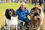 Lixnaw Vintage Rally : Pictured at the Lixnaw Vintage Rally on Sunday last was Andrew Fealy with his dogs Savannagh & Louis.