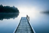 Misty morning at Lake Mapourika jetty near Franz Josef Glacier village, Westland Tai Poutini National Park, West Coast, UNESCO World Heritage Area, New Zealand, NZ
