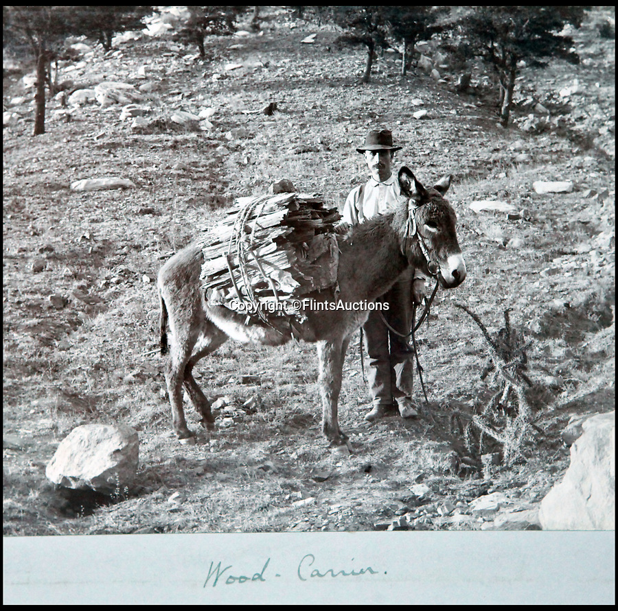 BNPS.co.uk (01202 558833)<br /> Pic: FlintsAuctions/BNPS<br /> <br /> Wood carrier...<br /> <br /> Unseen album reveals the life of a cowboy in the real wild west...<br /> <br /> Fascinating previously unseen early photos of cowboys in the Wild West have come to light 130 years later.<br /> <br /> They show life on the ranches of Colorado and New Mexico in the vast expanses of the south west US in the 1880s.<br /> <br /> One dramatic image captures the thrilling moment a group of cowboys ride towards the camera with hats held aloft.<br /> <br /> The photos are thought to have been taken by a British farmhand who travelled Stateside in the late 19th century to earn a living.