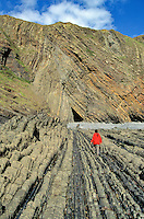 Folded and Faulted Rocks at Hartland Quay, 320 Million Year Old Carboniferous Rocks, North Devon Coast of England, AGPix_0037.