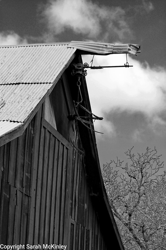 A wood barn with a corrugated metal roof near Calistoga in Napa County in Northern California.