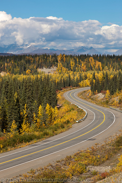 Autumn foliage along the George Parks highway, Interior, Alaska.