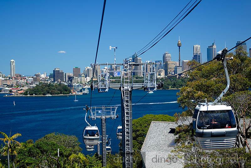 Sydney city skyline viewed from cable-car at Taronga Zoo. Sydney, Australia