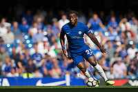 Chelsea's Michy Batshuayi in action   <br /> <br /> <br /> Photographer Craig Mercer/CameraSport<br /> <br /> The Premier League - Chelsea v Everton - Sunday 27th August 2017 - Stamford Bridge - London<br /> <br /> World Copyright &copy; 2017 CameraSport. All rights reserved. 43 Linden Ave. Countesthorpe. Leicester. England. LE8 5PG - Tel: +44 (0) 116 277 4147 - admin@camerasport.com - www.camerasport.com