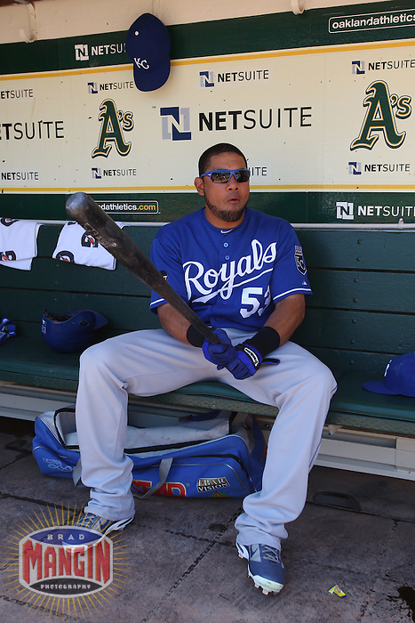 OAKLAND, CA - JUNE 16:  Melky Cabrera #53 of the Kansas City Royals gets ready in the dugout before the game against the Oakland Athletics at the Oakland-Alameda County Coliseum on Thursday, June 16, 2011 in Oakland, California. Photo by Brad Mangin