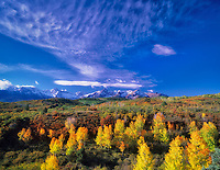 High clouds with fall colored aspens. San Juan Mountains. Uncompahgre National Forest, Colorado