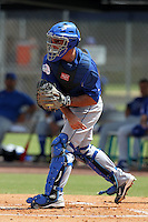 Italy National Team catcher Juan Pablo Angrisano #14 during an Instructional League game against the Washington Nationals at Carl Barger Training Complex on September 28, 2011 in Viera, Florida.  (Mike Janes/Four Seam Images)