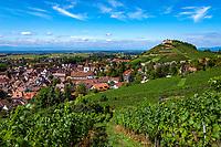 Deutschland, Baden-Wuerttemberg, Markgraefler Land, Weinort Staufen: auf einem Huegel die Burgruine Staufen   Germany, Baden-Wuerttemberg, Markgraefler Land, wine village Staufen; above castle ruin Staufen nested on a hill