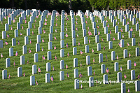65095-02003 Flags on Memorial Day at Jefferson Barracks National Cemetery, St Louis, MO