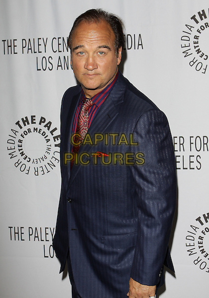JIM BELUSHI .PaleyFest: Fall2010 TV Preview CBS Party  held at The Paley Center for Media, Beverly Hills, California, USA, 10th September..half length suit blue pinstripe red striped tie paisley print navy .CAP/ADM/TC.©T. Conrad/AdMedia/Capital Pictures.