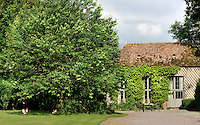 A large cherry tree grows next to the wisteria-clad orangery in the garden of the chateau