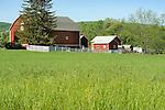 Small farmstead near Oriele, PA.