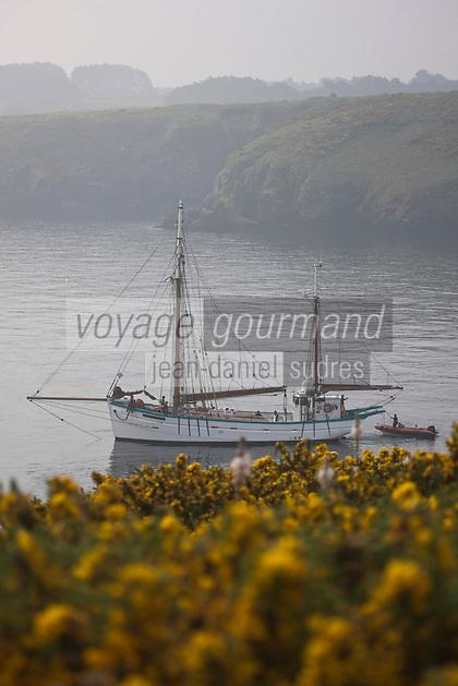 Europe/France/Bretagne/56/Morbihan/ Belle-Ile-en-Mer/Sauzon: Vieux gréements