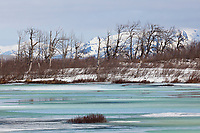 Overflow ice along the Copper River Delta, Chugach Mountans, southcentral, Alaska