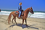 Evelyn Hanggi Riding Horse On Beach