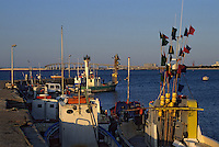 Europe/France/Poitou-Charentes/17/Charente-Maritime/Ile de Ré: Le port de Rivedoux et le pont de l'Ile de Ré