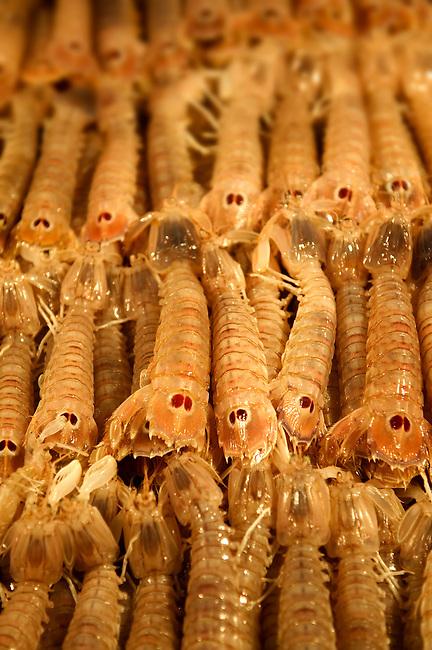 Fresh Connoce prawns - Venice Rialto Fish Market