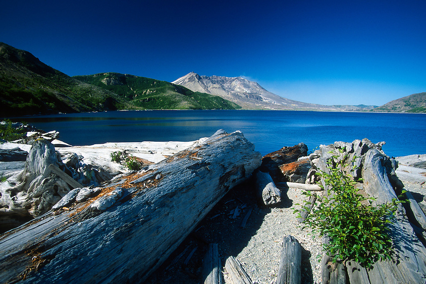 Mt. St. Helens from the Shore of Spirit Lake Near Harmony, Mt. St. Helens National Volcanic Monument, Washington, US