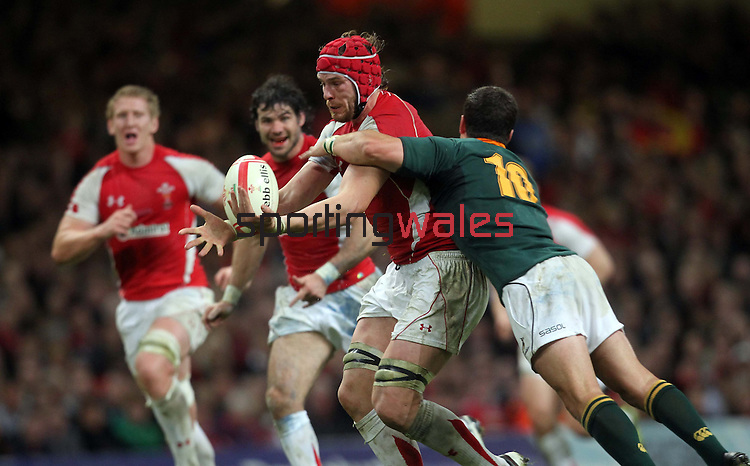 Alun Wyn Jones takes the loose ball under pressure from Morne Steyn..Invesco Perpetual '10 Series.Wales v South Africa.13.11.10.Photo Credit: Steve Pope-Sportingwales